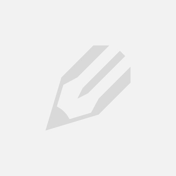 Благовещение Пресвятой Богородицы. Икона праздника в объяснении В.Н.Лосского и Л.А.Успенского